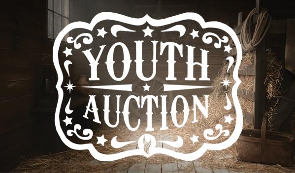 2017 crumy auction
